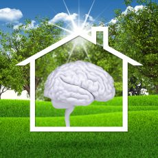 House icon with white brain. Green grass and blue sky as backdrop